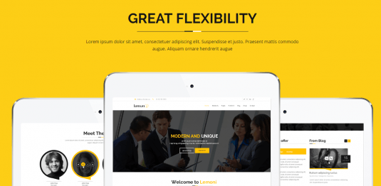 Lemoni Drupal 8 Great Flexibility Theme